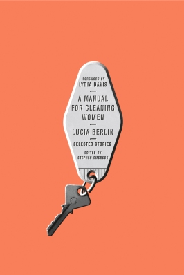 a-manual-for-cleaning-ladies